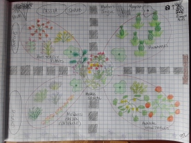 Concept design of community garden.